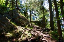 ruine-hohenwaldeck-schliersee