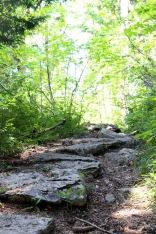 wanderung-schliersee-imwald